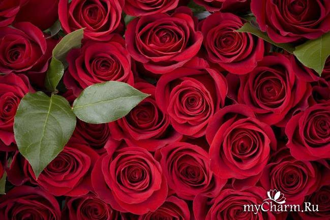 Розовые секреты красоты