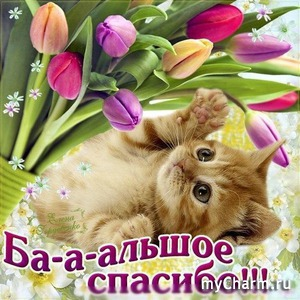 Спасибо, Дашенька!
