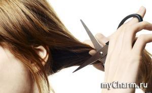 Когда рука не поднимается коротко отстричь волосы