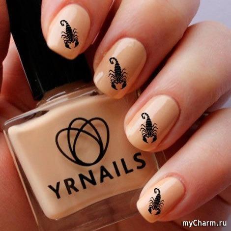 Маникюр с рисунком скорпион