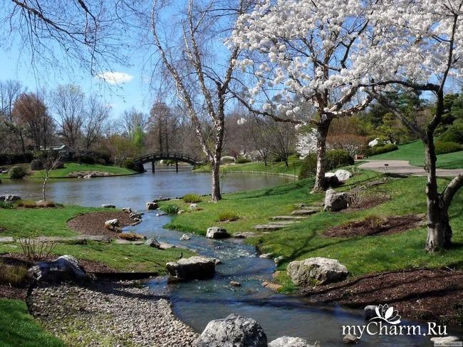 ФотоЧарм Весны творенье