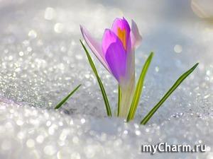 """ФлешМоб """"Фото Чарм"""" Десятый - юбилейный этап!!!"""