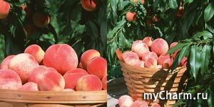 Персиковый поцелуй от LIBREDERM