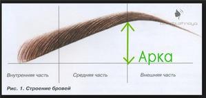 Как придать идеальную форму бровям)