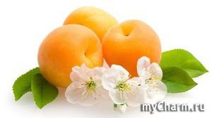 Общее действие на кожу плодов, употребляемых для масок