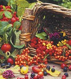 Ягодка к ягодке – дыхание природы. Часть 3