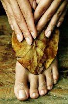 Современные средства для решения осенних проблем кожи ног