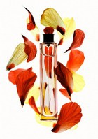 Сезонные запахи. Часть 2
