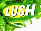 Lush – свежая косметика ручной работы
