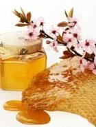 Лучшие ресурсы природы в каждой капле мёда
