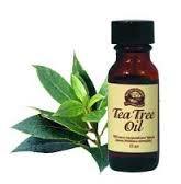 Как воздействует масло чайного дерева на наши эмоции