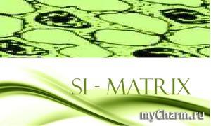 ЛИПОСОМЫ Si Matrix-королевская защита кожи