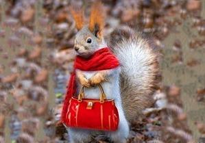 Осень - не повод грустить... Осень - это повод носить красивый шарфик.