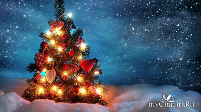 Волшебство под Новый год!