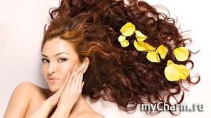 Уход за волосами: одна из процедур, которую нельзя пропустить