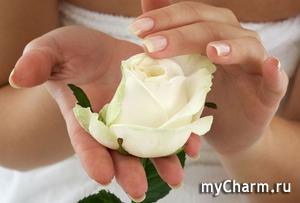 Сущее блаженство: массаж для рук с кремом от Aravia