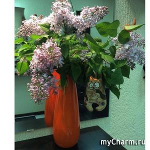 Позитивное настроение)))