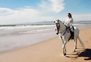 Верховая езда... прикоснись к мечте!!!