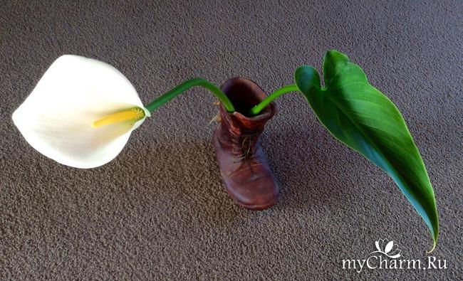 ФЛЭШМОБ ФОТОЧАРМ. Как я готовлюсь к фотоконкурсу с цветочками.