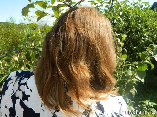 марафон по уходу за волосами