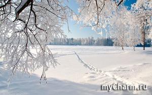 А вы любите зиму?