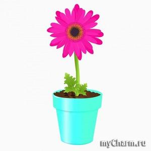 Тест: Выберите наиболее приятное для вас сочетание цветов, и узнайте, что об этом говорят психологи