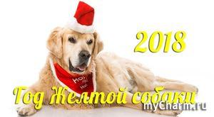 Новый год 2018 – Год Желтой Земляной Собаки