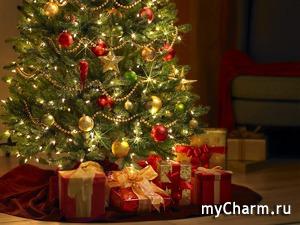 Под ёлкой в Новый год каждый что-нибудь найдёт