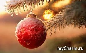 Приятные новогодние прогулки как подарок для нас на Новый год