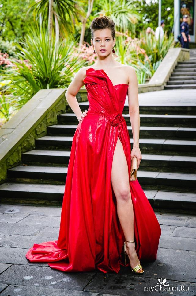 Шпица В Красном Платье