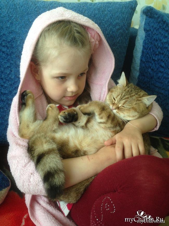 "Флешмоб ФотоЧарм. ГОЛОСОВАНИЕ. ""Без кота жизнь не та!"" (6)"