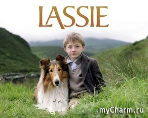 """Кино-флэшмоб: """"Лесси"""" (2005)"""