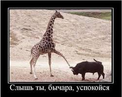 Сказонька не на сон грядущий)))
