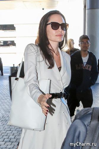Новая сумка Анджелины Джоли стала сенсацией