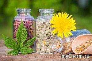 Мудрость народных рецептов при некоторых заболеваниях и проблемах. Корица и мед