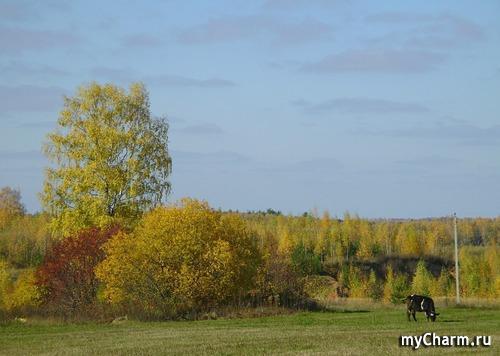 ФотоЧарм Осенний пейзаж