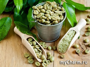 Поможет ли похудеть зеленый кофе?
