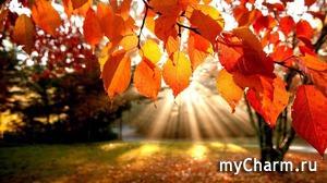 """Осенний марафон """"Счастливая осень исполнения желаний"""". Четвертое задание"""