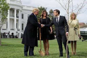 Мелания Трамп и Брижит Макрон с мужьями посадили дерево у Белого дома