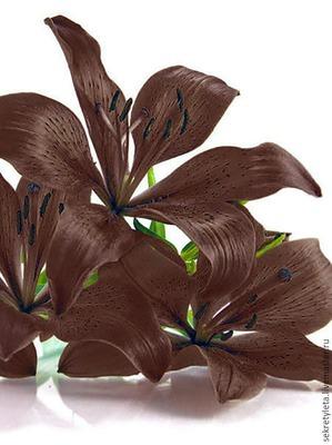 Шоколадная лилия - самый актуальный тон волос!