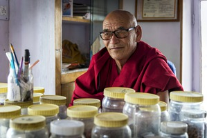 Когда тибетская медицина помогает: конкретные случаи из практики врачей