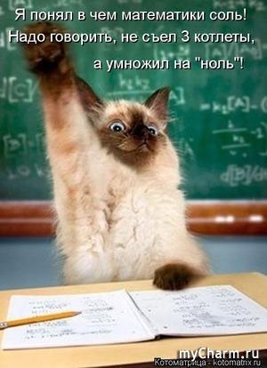 Котоматрица: Снова в школу!