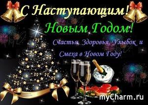Еще одно классное новогоднее поздравление получено!