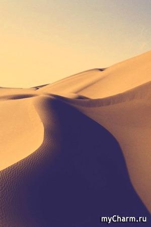 А в этот раз пустыня...