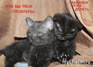 Мой обновленный маникюрчик)