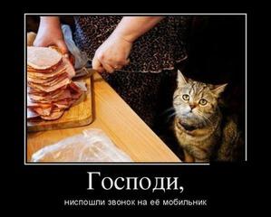Посмеемся?)