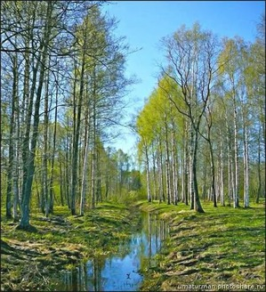 Савина Любовь. Весне дорогу... Весенний марафон красоты 3в1. Отчёт за 05.03-11.03-18.03