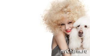 Green Pharma и Evinal: уход за волосами после химической завивки или карвинга