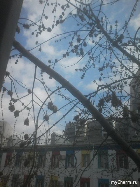 Весна в городе))