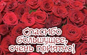 Я подарочек получила )))